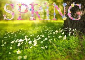 Spring 1210194 1280