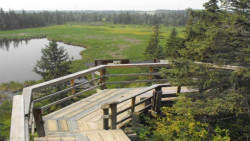 Gaetz Lake Sanctuary City Of Red Deer 0